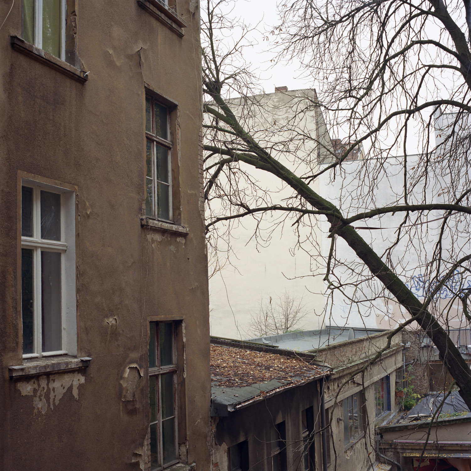 Looking out of the window of the Schokolade Fabrik, 2008, from Berlin Project by Abby Storey