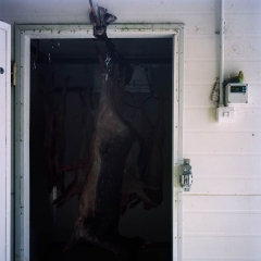 Chiller with Deer. Photograph by Abby Storey for the series Of the Land.