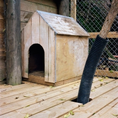 Meggie's Kennel. Photograph by Abby Storey for the series Of the Land.