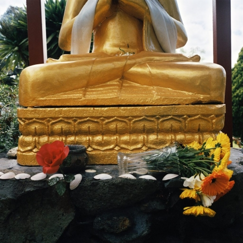 Buddha and Fallen Flowers, 2006, from the series Touchstones by Abby Storey.
