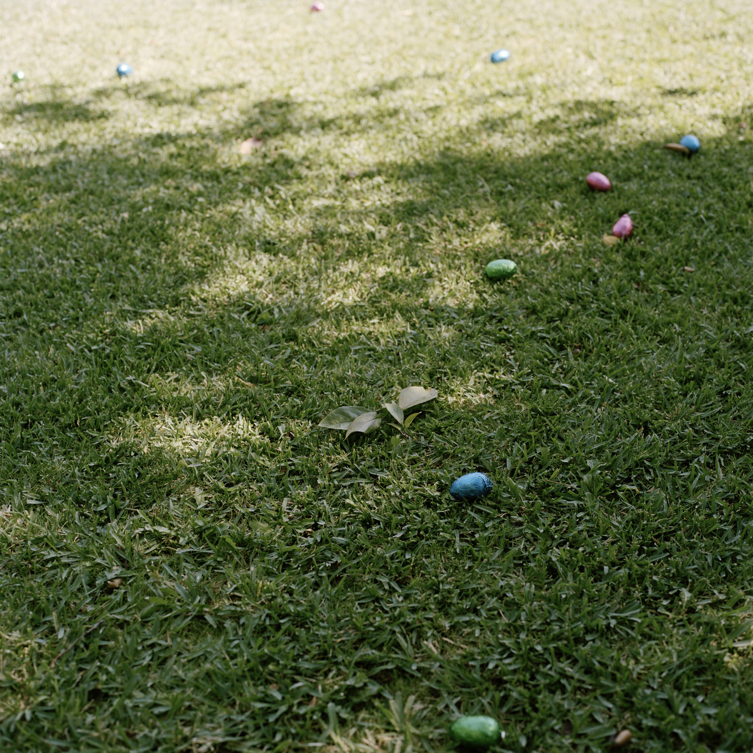 Easter Eggs, 2010, From The Series Touchstones By Abby Storey.