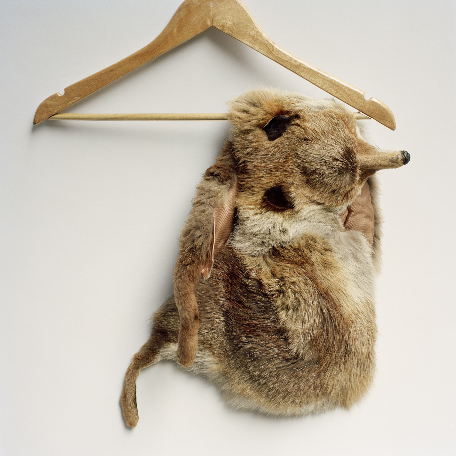 Fur Stole, 2009, From The Series Touchstones By Abby Storey.