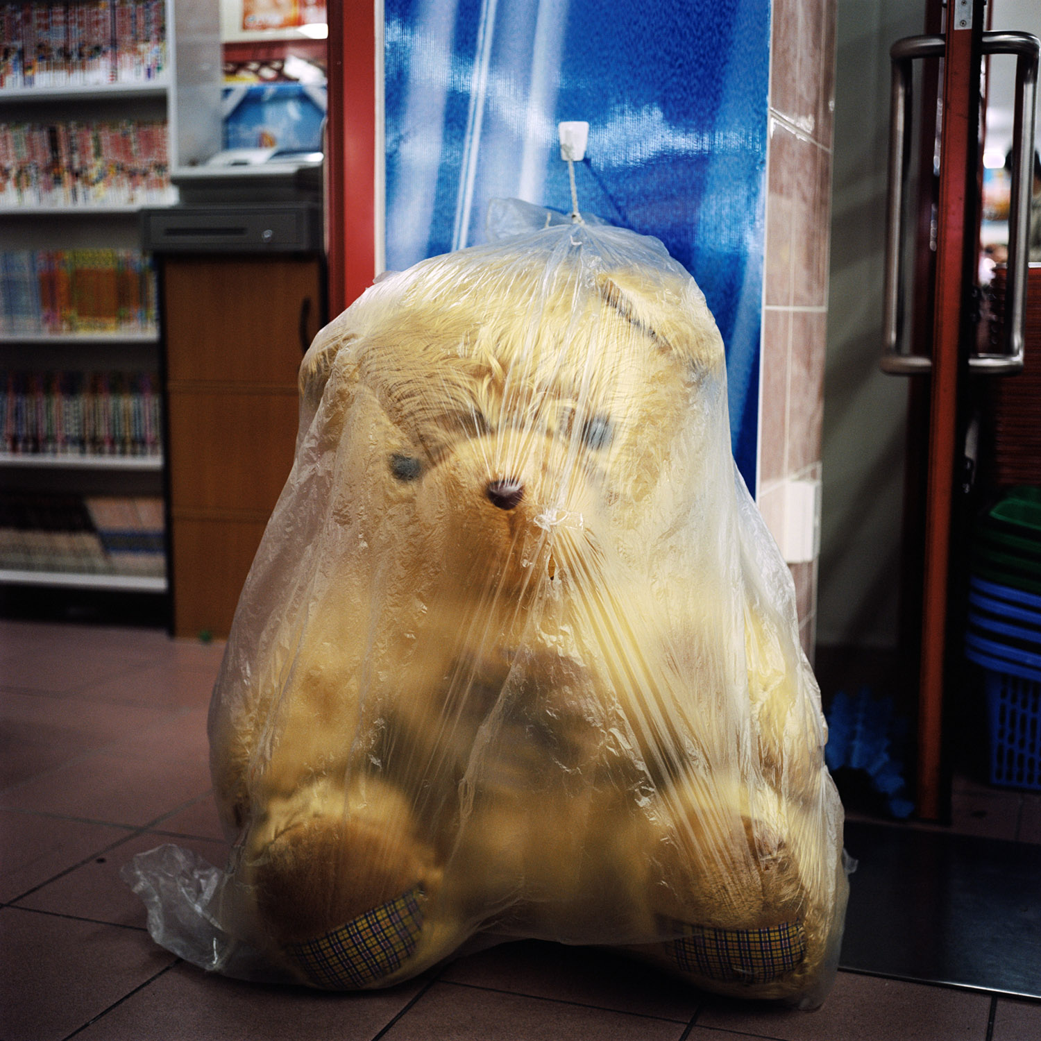 Plastic Wrapped Bear, 2005, from the series Touchstones by Abby Storey.