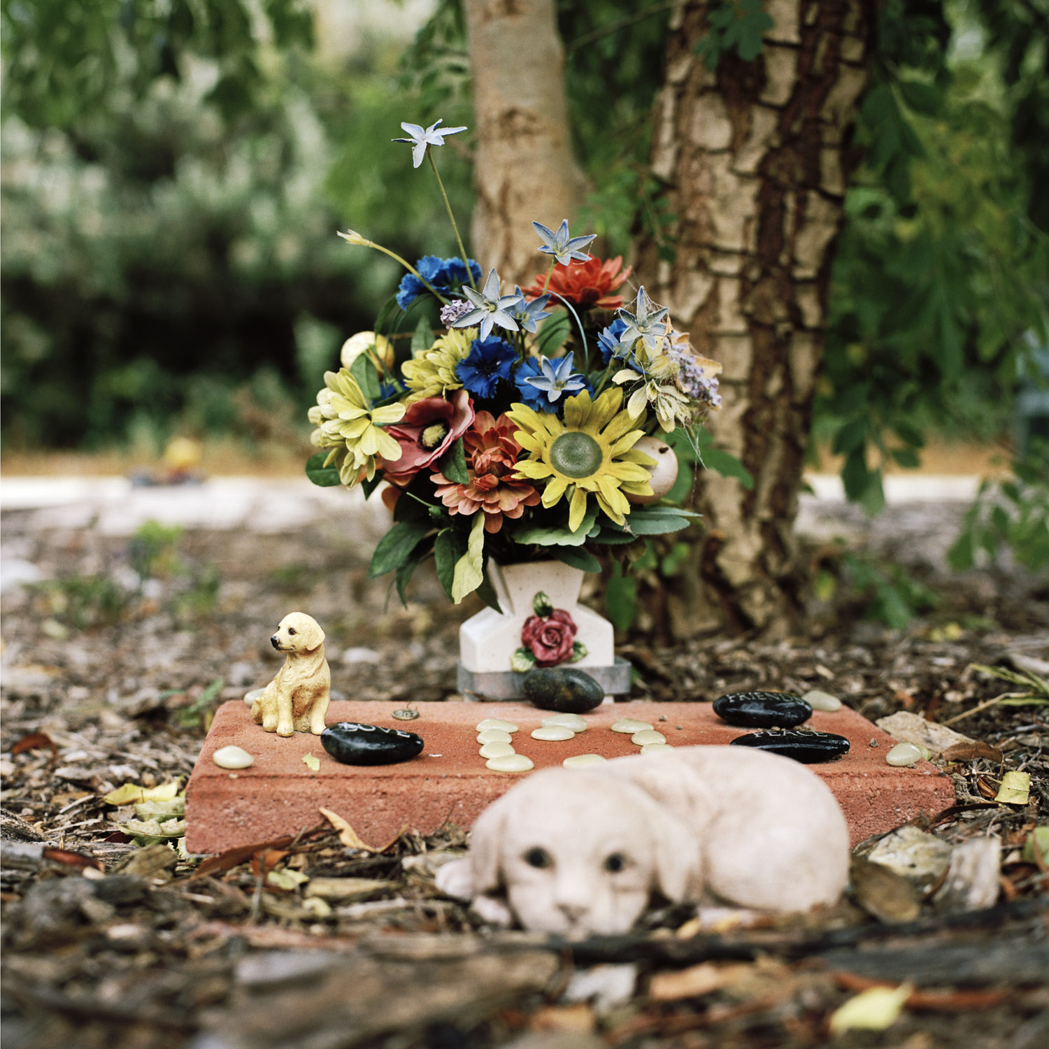 Puppy Grave, 2010, from the series Touchstones by Abby Storey.