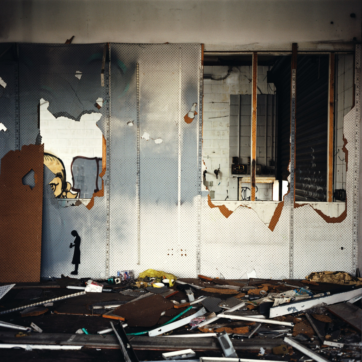Chaos, 2005, From The Series Observer By Abby Storey.