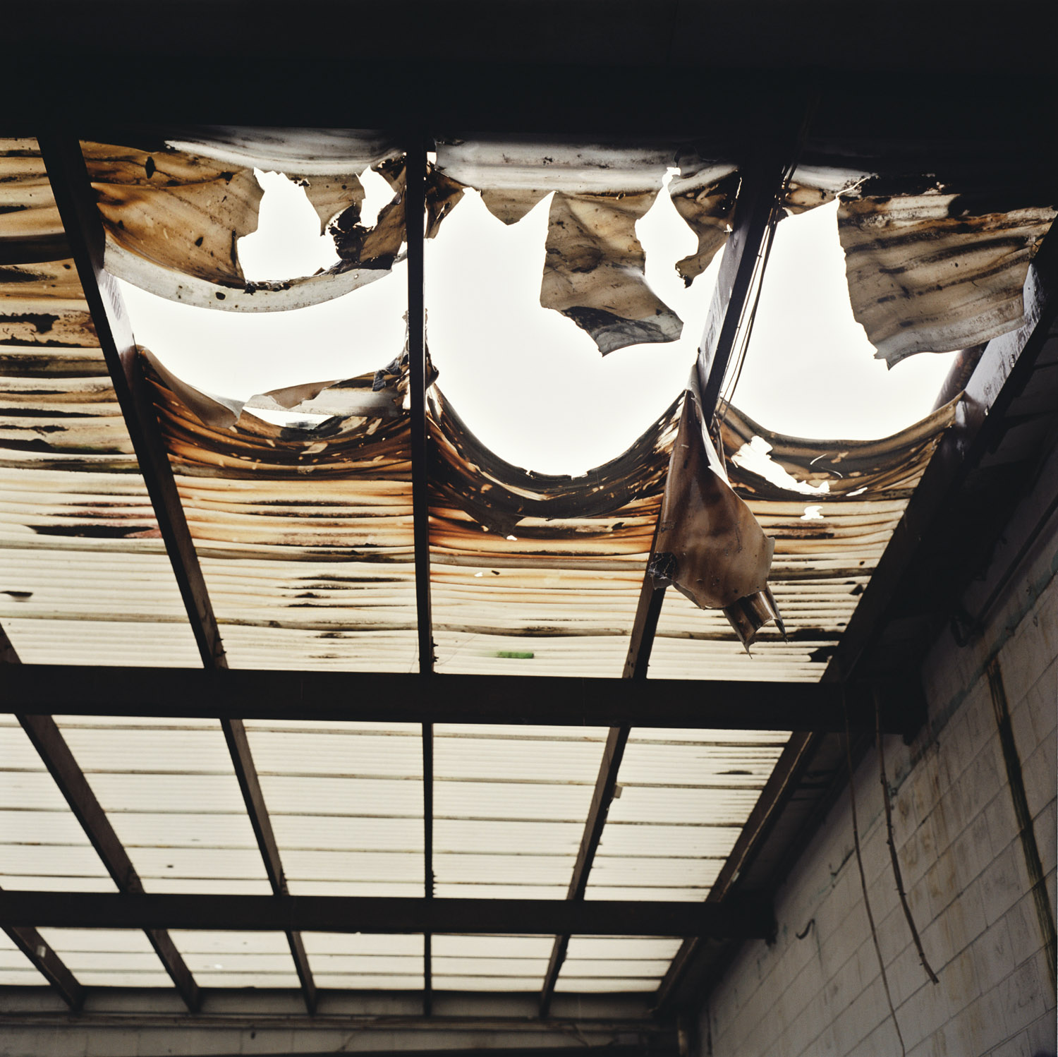 Roof, From The Series Observer By Abby Storey.