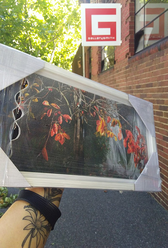 Abby Storey, Tree Portrait #3 being delivered to Gallerysmith in Melbourne